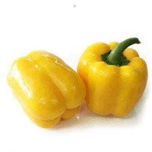 Capsicum/ Golden Capsicum 1Kg 圆黄椒