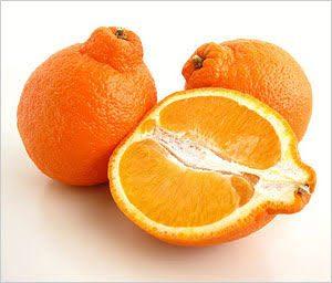 Tangelo Orange手剥橙