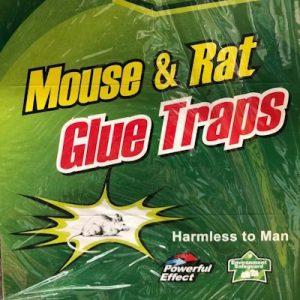日本进口驱鼠剂/MOUSE&RAT GLUE TRAPS