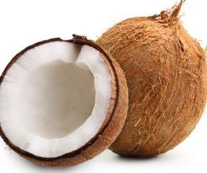 ▲Coconut 1P 椰子一个