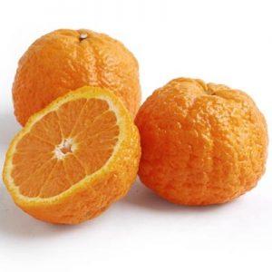 ▲【网红新品】Mandarin/Golden Nuggets Mandarin 1Kg 桔子
